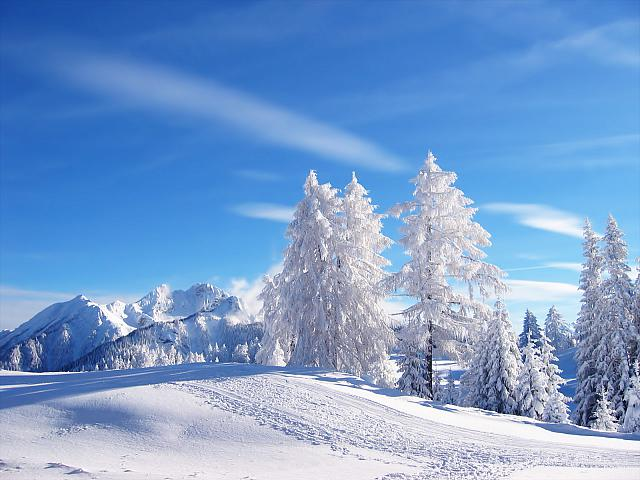 Winter_Landscape_1600