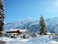 Winter_Holiday_1600